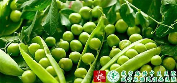 常吃豆类6.jpg